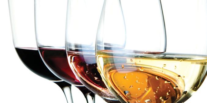 vini biologici toscani