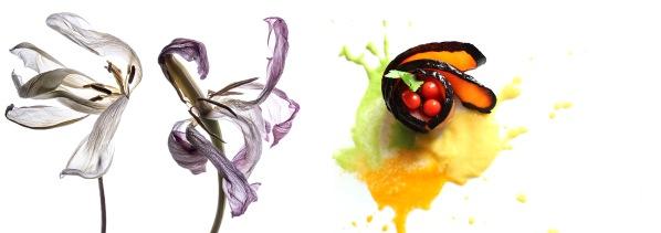 san gimignano arte e cucina