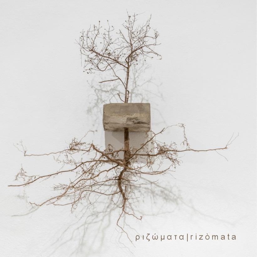 Rizomata - Nous Art Gallery - San Gimignano Art Gallery